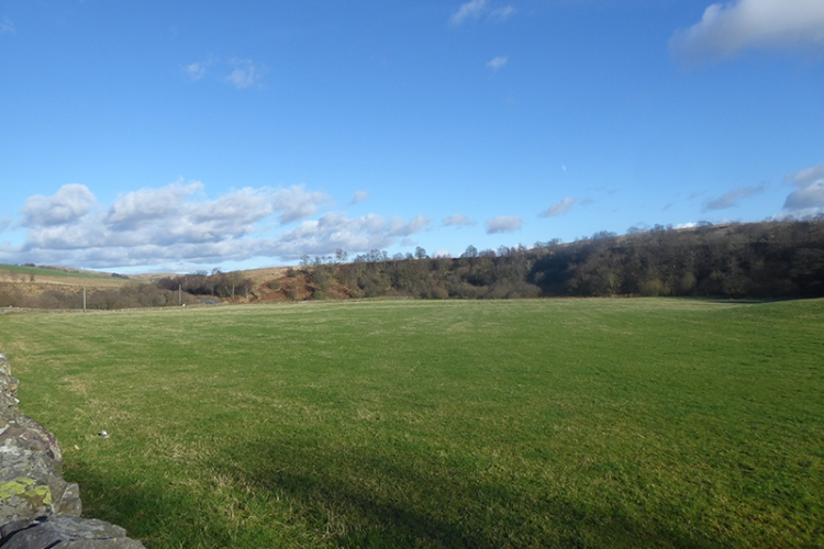 field near Bloch