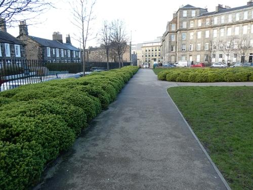 gardeners garden