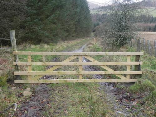 new gate whitshiels