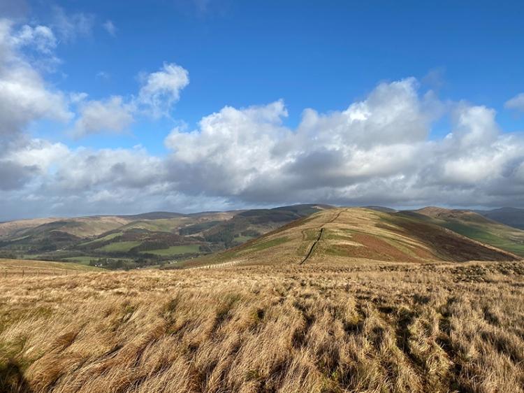 simon's hill picture