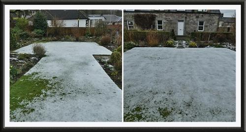 snowy lawns