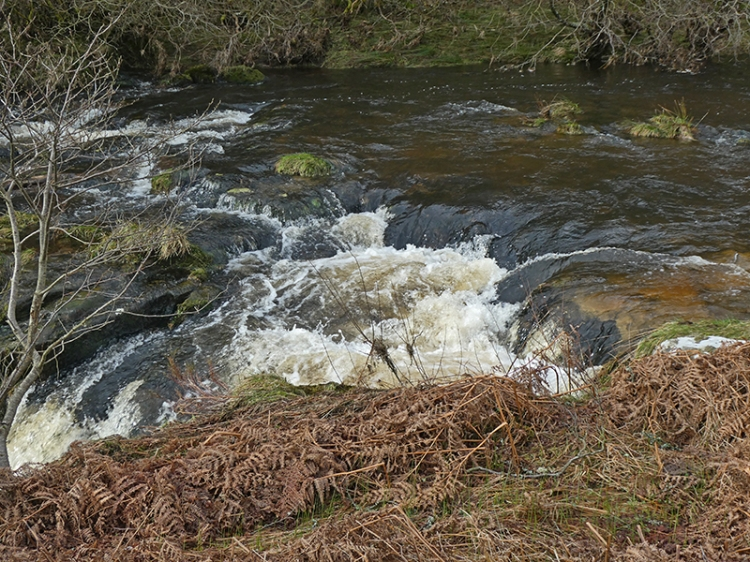 tarras cascade 3