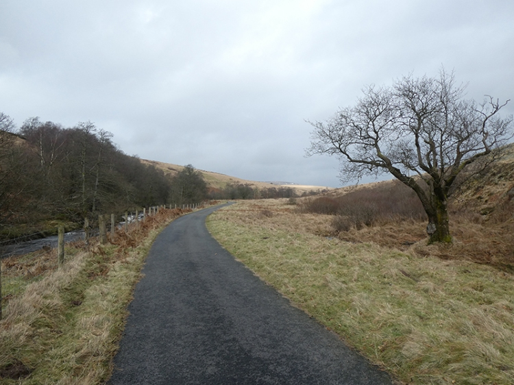 the road up Tarras