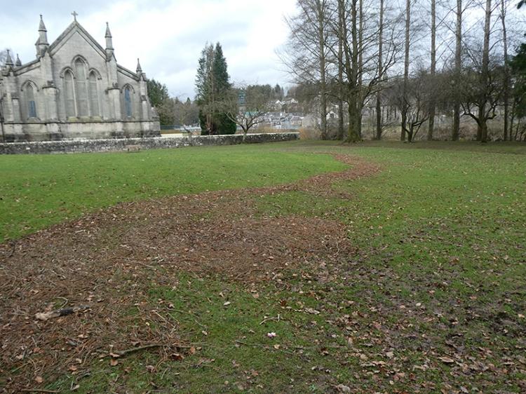 tide mark in park