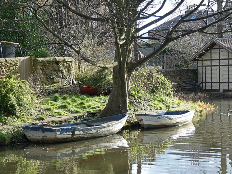 two rowing boats union canal