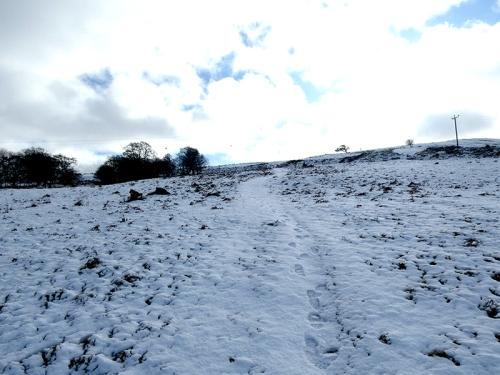 warbla path