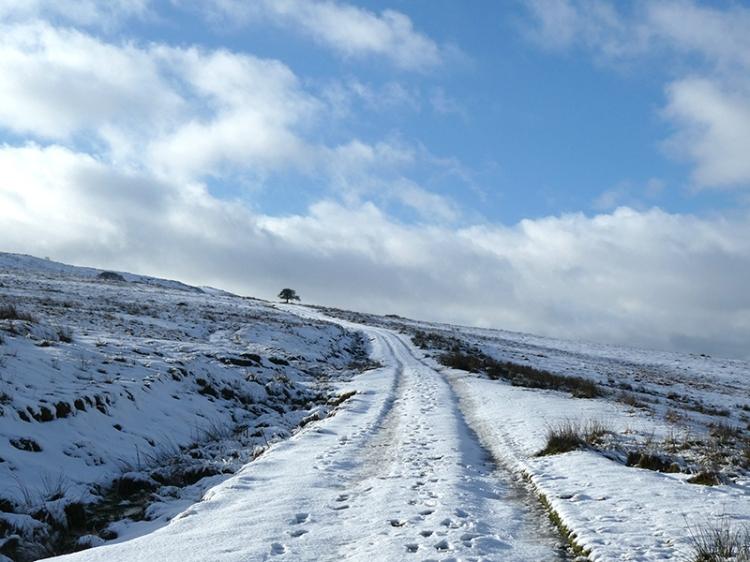 warbla track snow