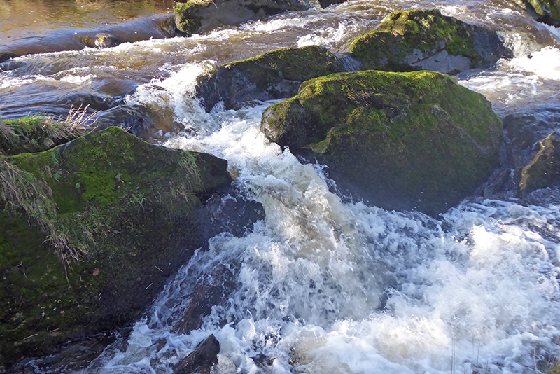 Wauchope Schoolhouse cascade from above