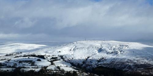 whita from warbla snow
