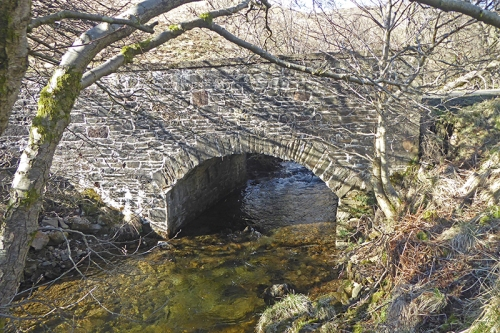 Carretrig bridge