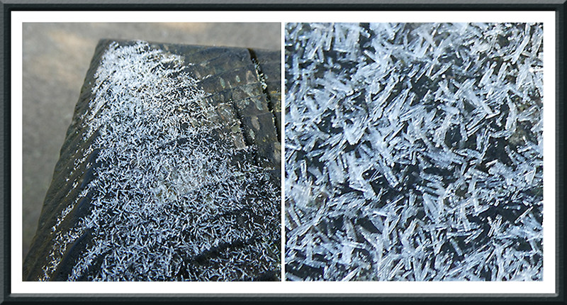 ice on gatepost