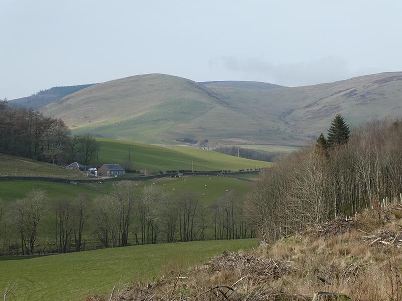 Looking back over Milnholm