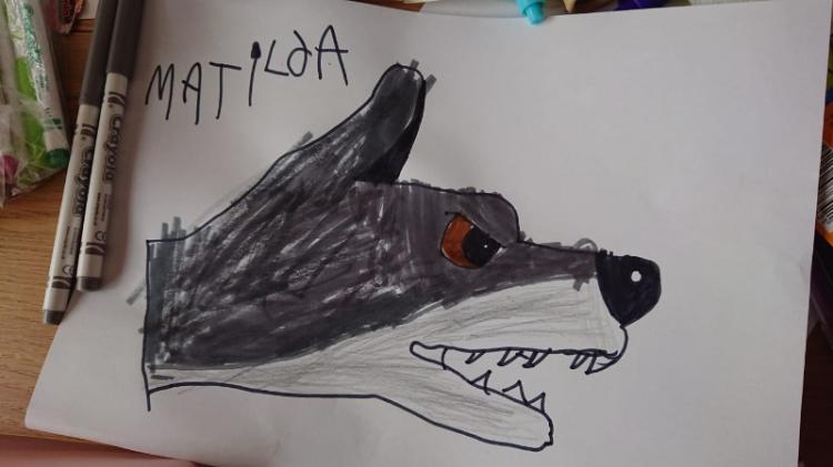 matilda's wolf