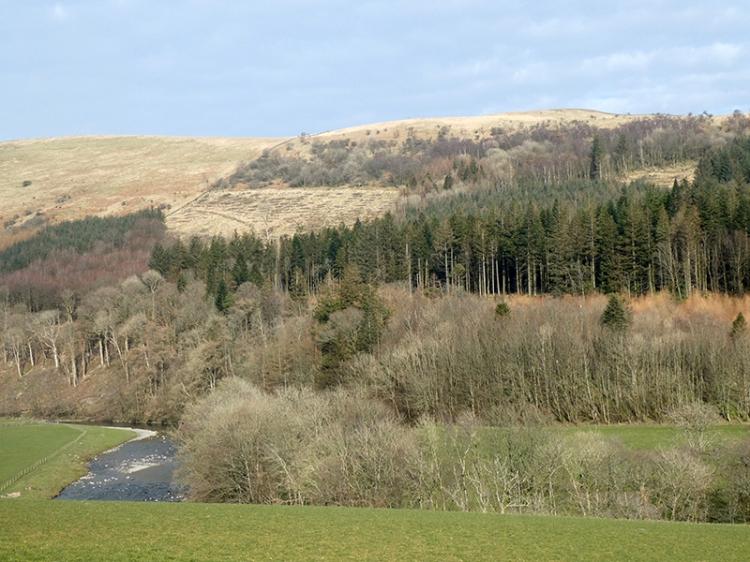Potholm Hill