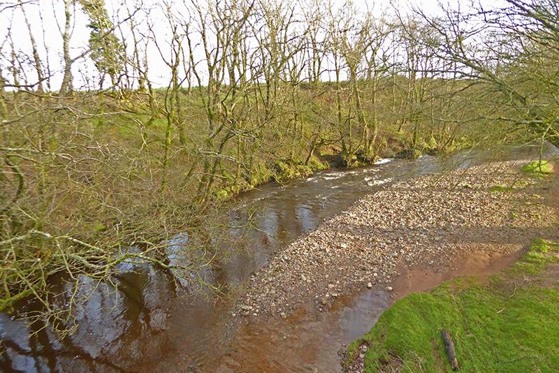 river sark