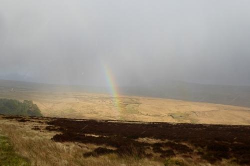 snowy rainbow