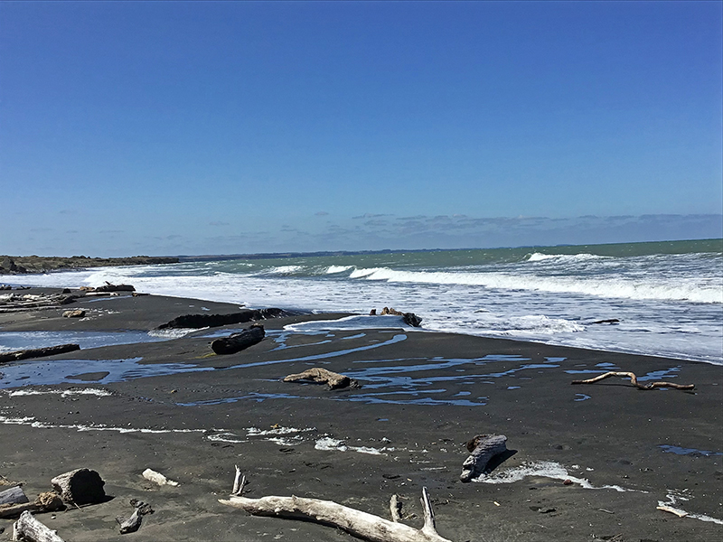 South Taranaki Bight