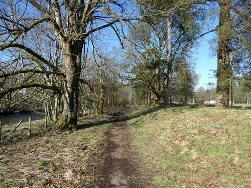 sunlit path castleholm