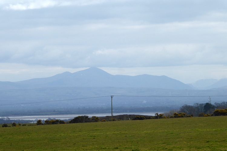 view of skiddaw from near hollee