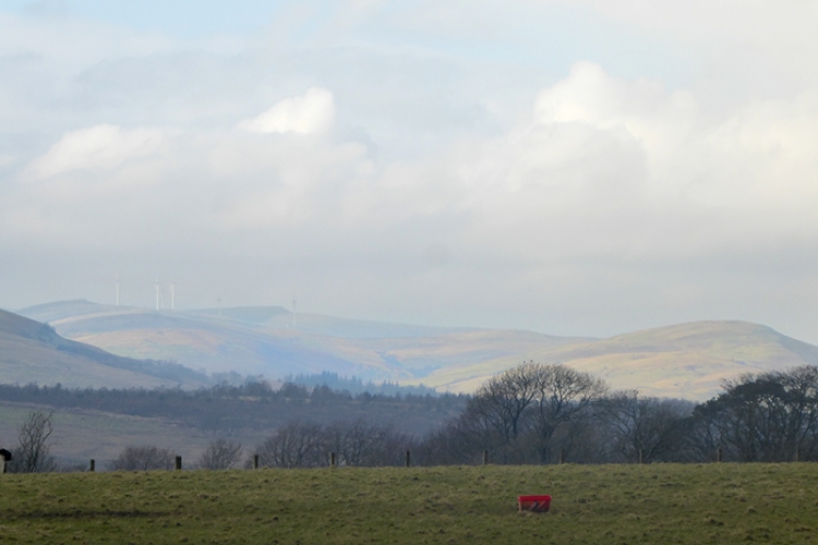 view of solway from Calygate road