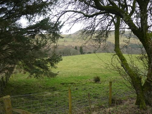 view over field topwards warbla