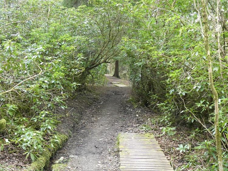 Walk 2 Duchess Bridge
