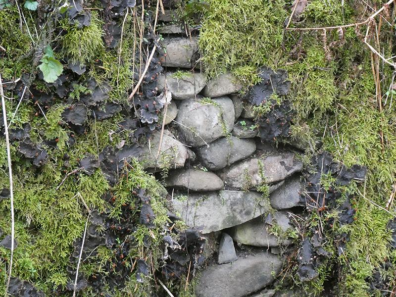 wall above ewesbank