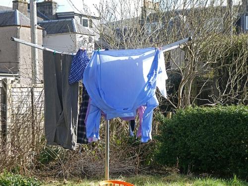 washing march
