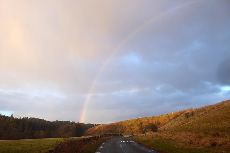 wauchope rainbow half