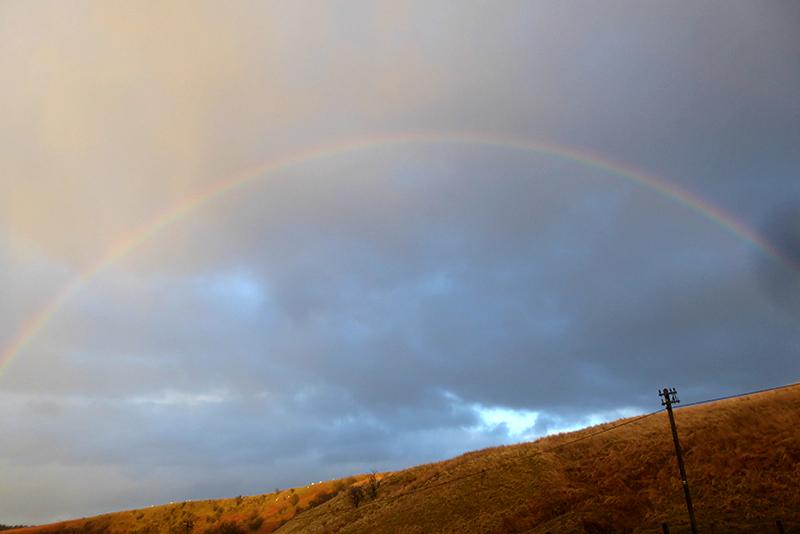 wauchope rainbow most