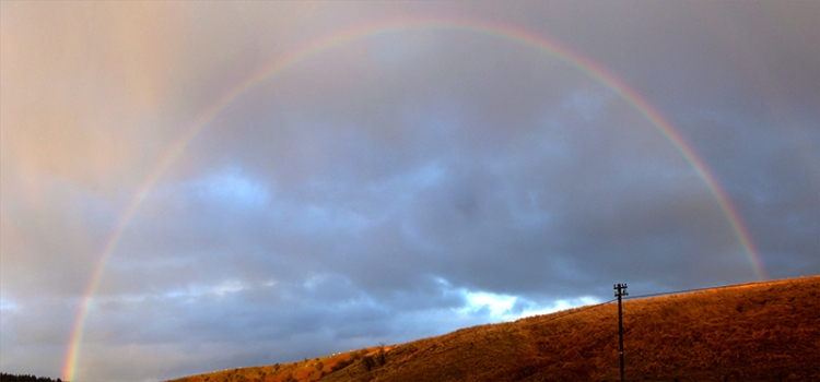 wauchope rainbow stitched