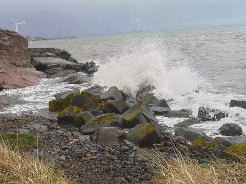 wemyss waves
