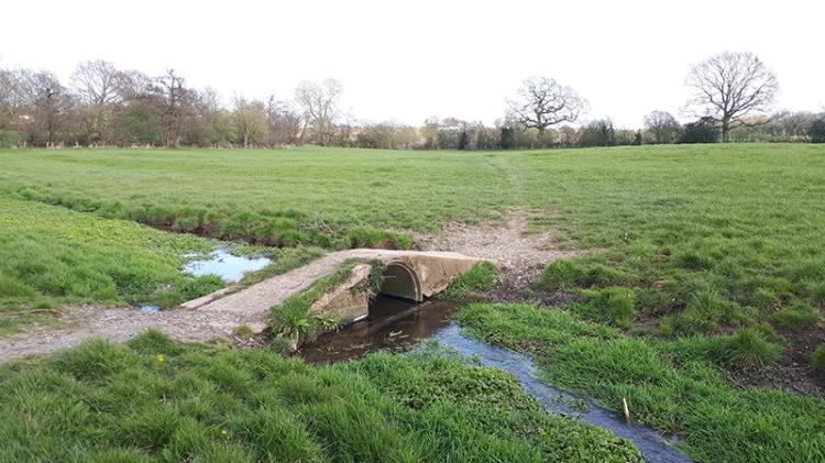 andrew's little bridge