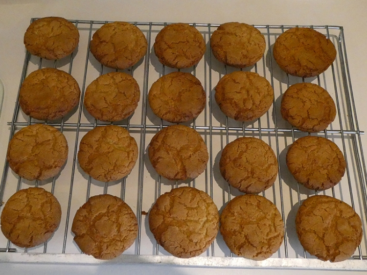 genuine ginger biscuits