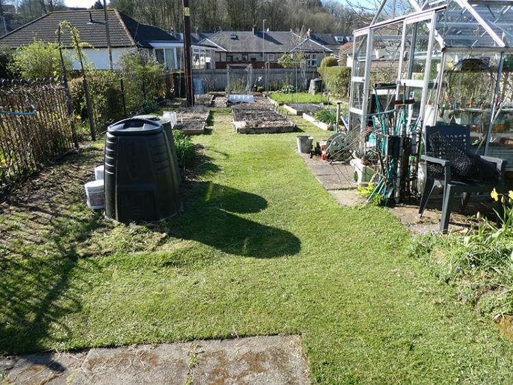 greenhouse grass