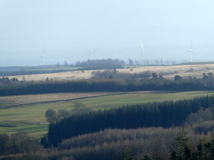 gretna windfarm from whita
