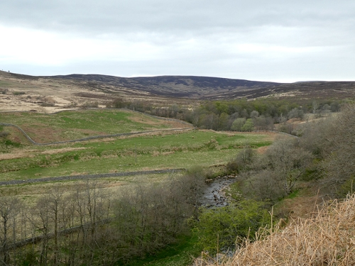 little tarras valley from bottom
