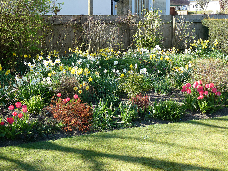 middle lawn top bed