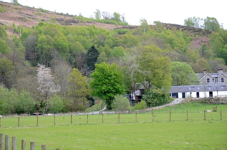 murtholm view