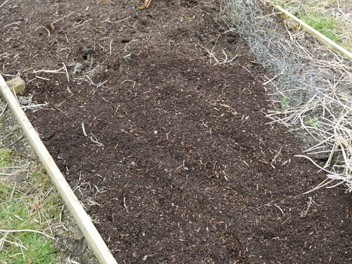 new compost on veg bed