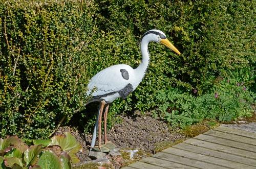 painted heron