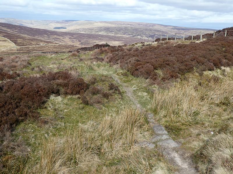 path down whita