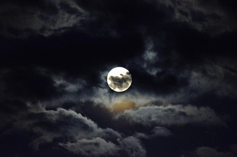 pink full moon 3