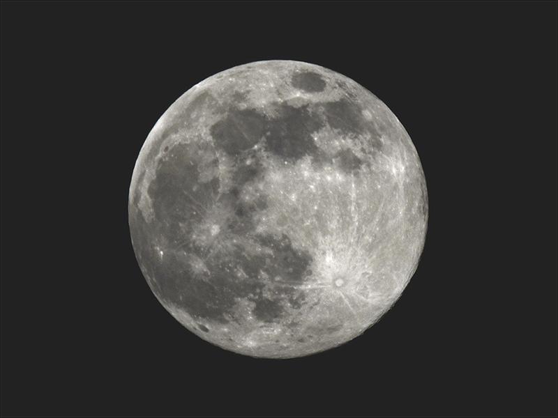pink full moon 4
