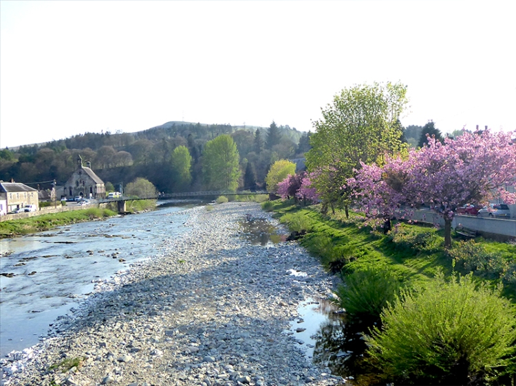 river with blossom from bridge