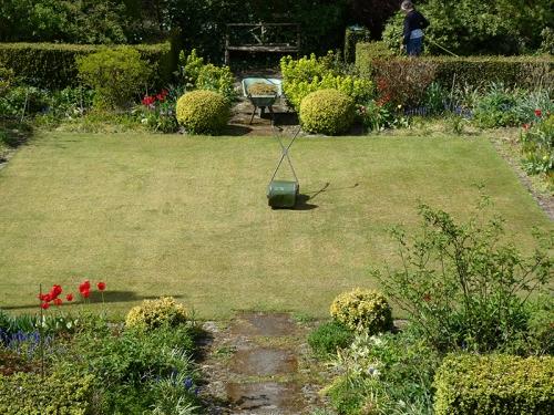 scarified lawn