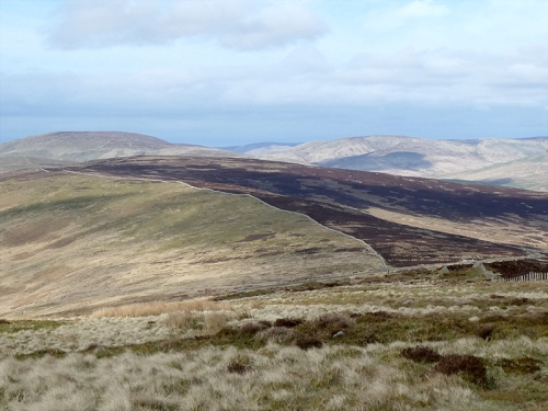 view of grouse and sheep moor