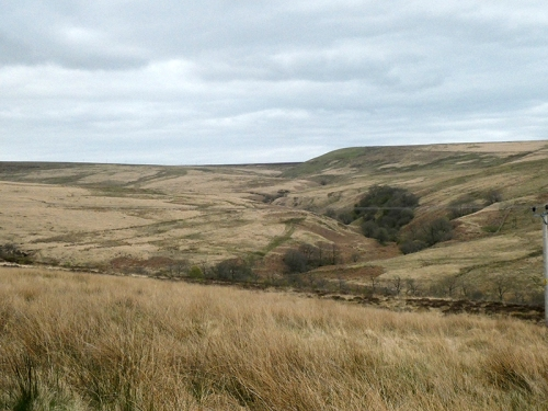 view of the moor from middlemoss road