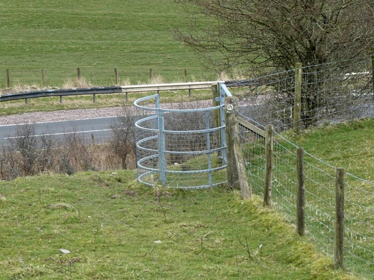 walk eight gate