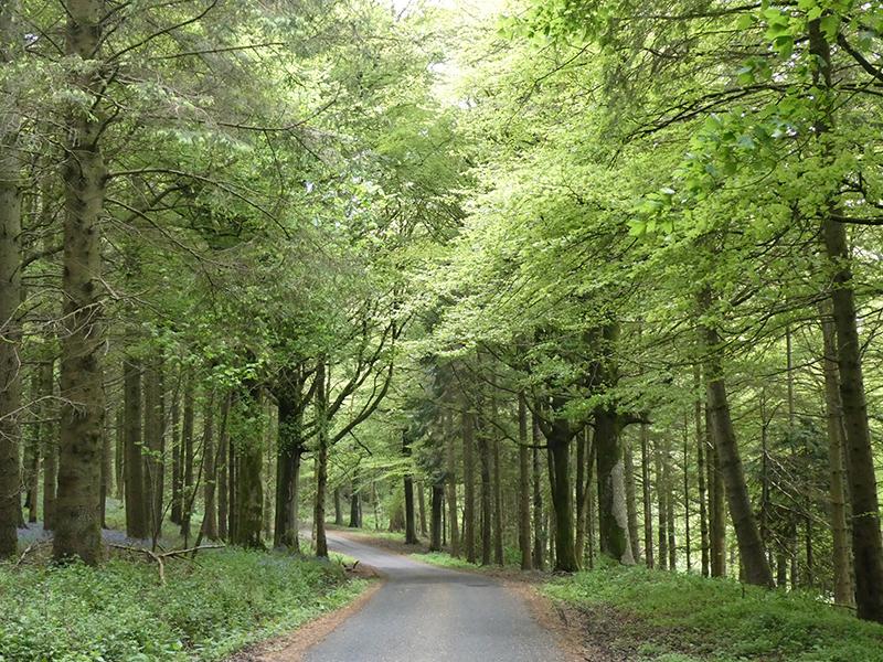 holmhead road